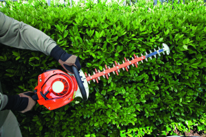 Hedge-trimmer-1170x780